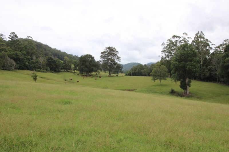 Rural Lifestyle Grazing Land at Pappinbarra near Wauchope & Port Macquarie