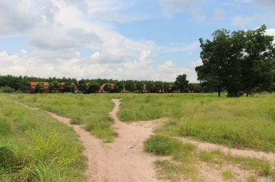 Dambae district, Tbong Khmum province, Dambae, Tboung Khmum   Land for sale in Dambae Dambae img 4