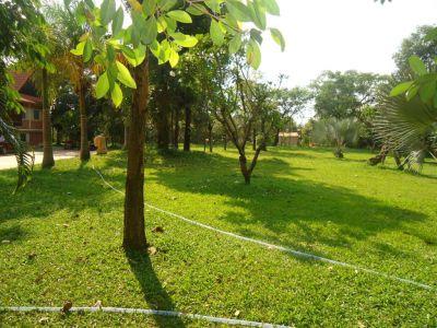 Svay Dankum, Siem Reap | Land for sale in Siem Reap Svay Dankum img 9
