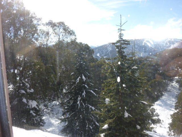 Snowski 9