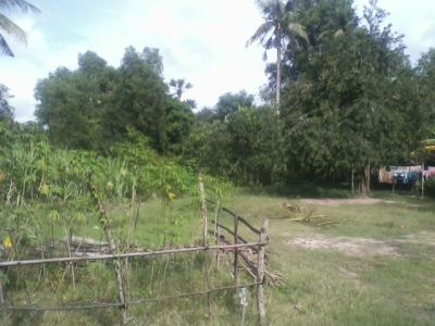 Tuk Meas Khang Lech | Land for sale in Banteay Meas Tuk Meas Khang Lech img 3