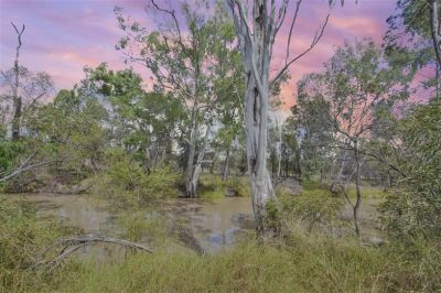 Give me a Home Amongst The Gum Trees . . . For Family Fun Please . . . A Fish or two and a Kangaroo . . .
