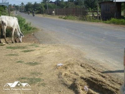 Rokar Thum, Kampong Speu | Land for sale in Chbar Mon Rokar Thum img 3