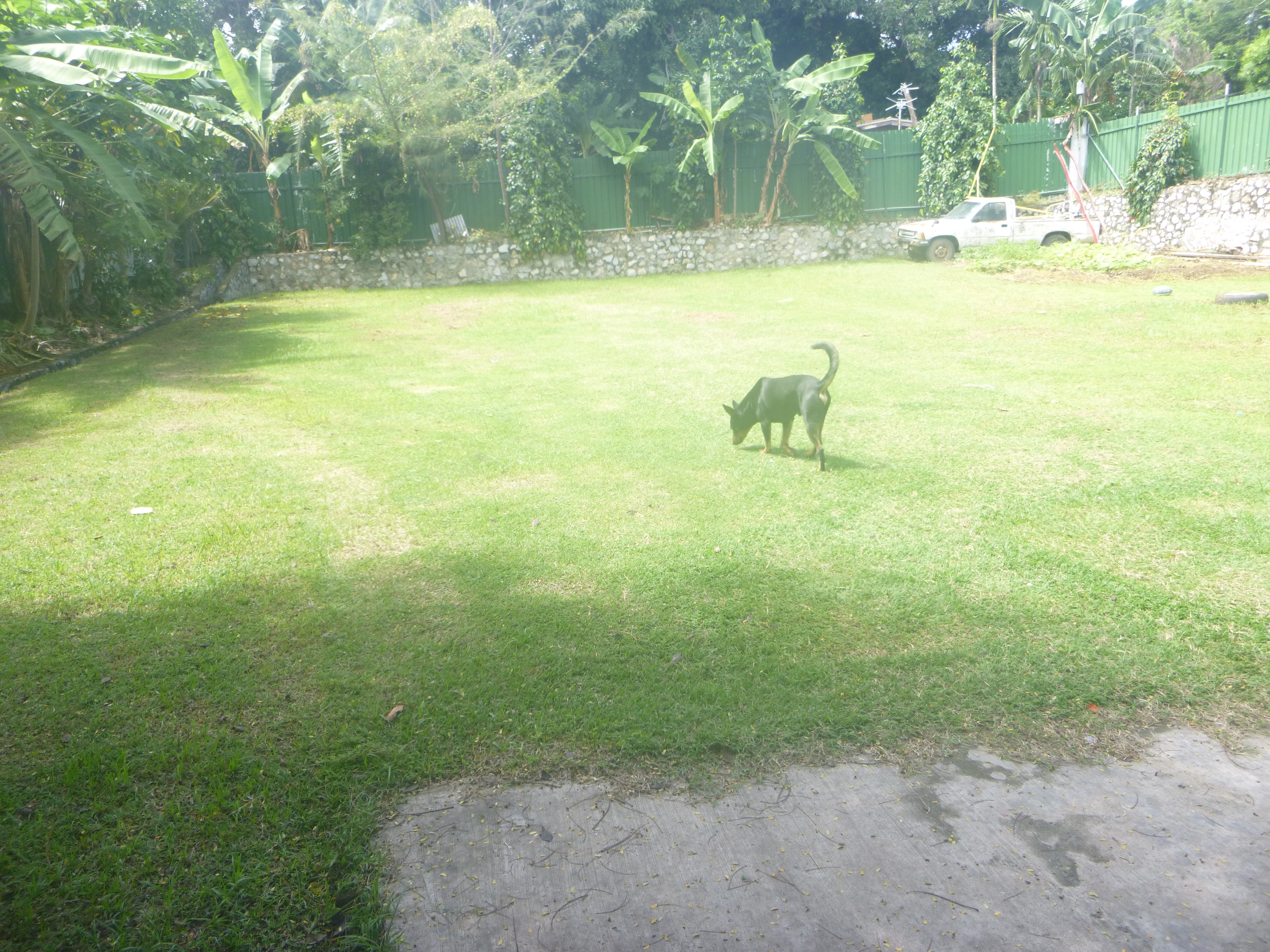 House for sale in Port Moresby Boroko East - SOLD