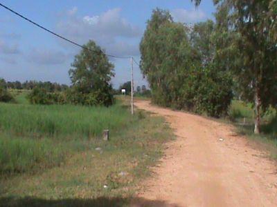 Kandaek, Siem Reap   Land for sale in Prasat Bakong Kandaek img 3