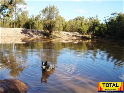 TOTAL RARE FIND - 114.1ha(281.9 Acres) + 3 Dams With Improved Pasture.