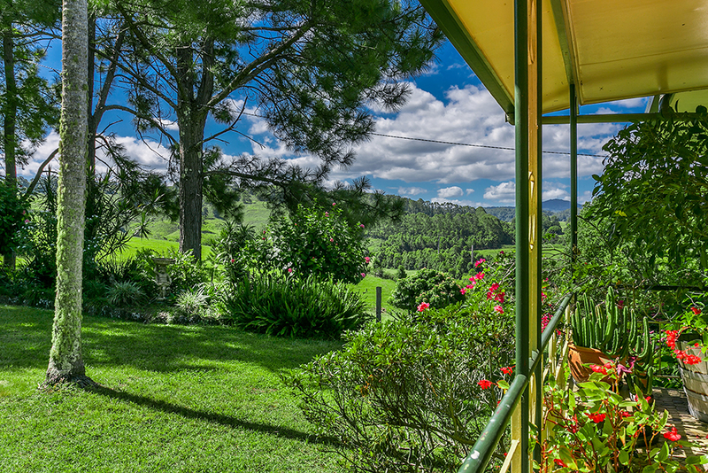 Secluded 132 Acres Of Elevation and Rolling Hills
