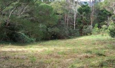 Cleared block in sought after street backing onto farm land
