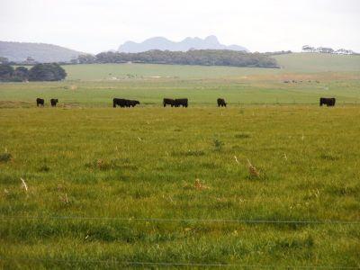 1271 Memana Road, Memana, Flinders Island