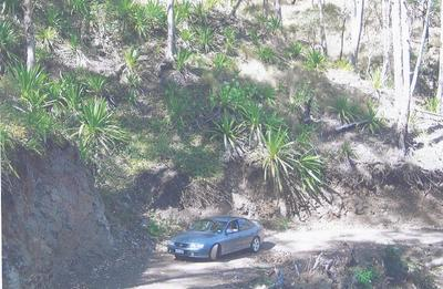 THORNTON, QLD 4341