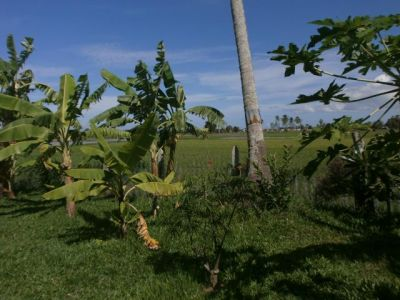 | Villa for sale in Kep  img 1