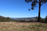 2.5 acres Pasture, Bush and Creek