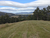 Fully Fenced 10 Acre Lot
