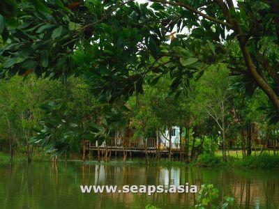 Chamkar Luong, Sihanoukville |  for rent in Kampong Seila Chamkar Luong img 14