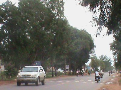 Kandaek, Siem Reap   Land for sale in Prasat Bakong Kandaek img 4