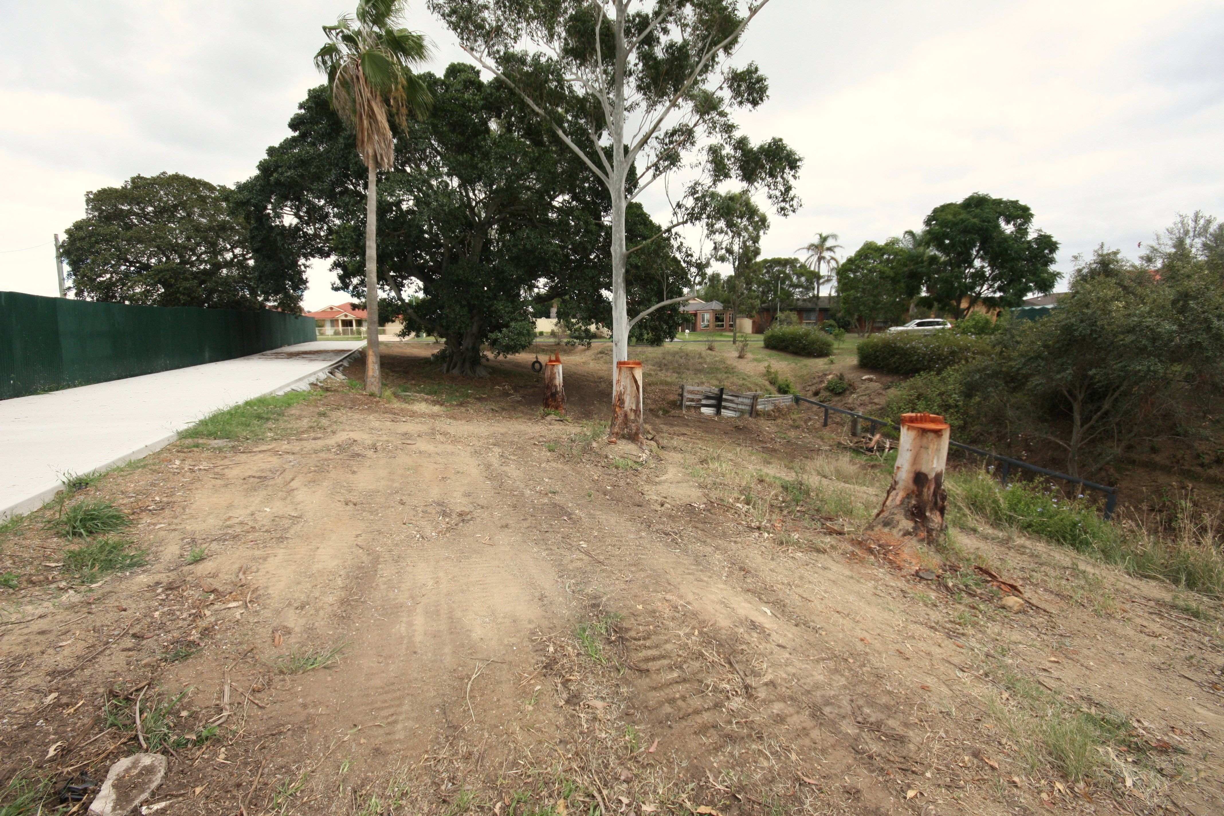 Lot 1401 Falkiner Crescent, Singleton