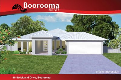 This brand new home boasts a fantastic mix of outdoor/indoor living spaces.