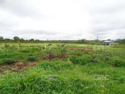 Farmland for sale in Daru Daru