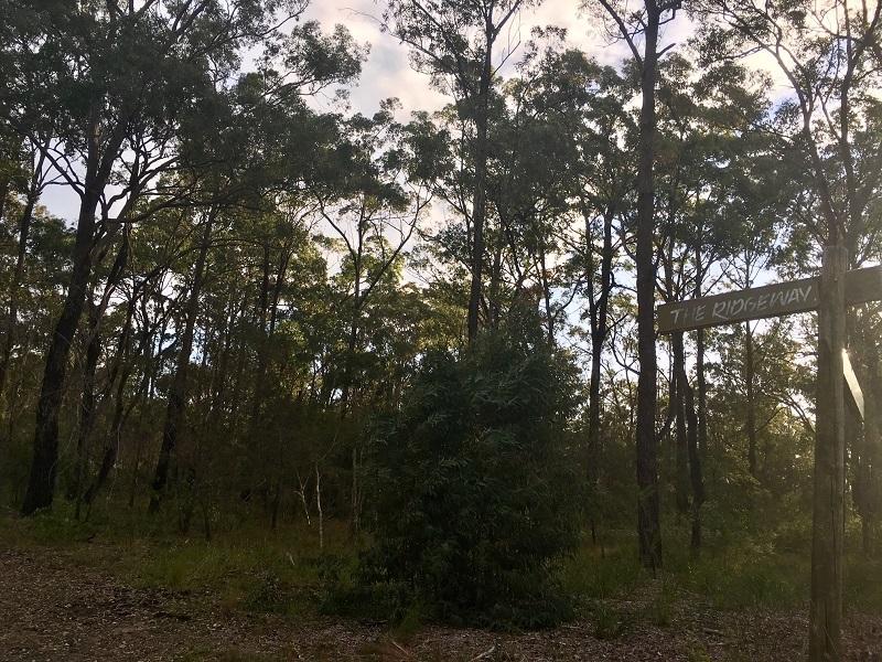 RU2 Non-Urban land - investment lot 250m to Port Stephens