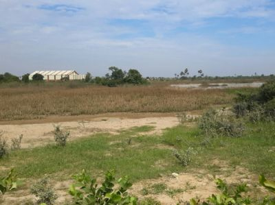 2/2 , Dangkao, Phnom Penh | Land for sale in Dangkao Dangkao img 1