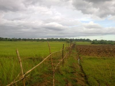 Veal Pong | Land for sale in Odongk Veal Pong img 1