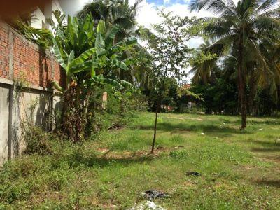 Sala Kamraeuk, Siem Reap | Land for sale in  Siem Reap Sala Kamraeuk img 1