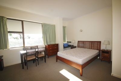 DELIGHTFUL SPACIOUS FULLY FURNISHED  APARTMENT