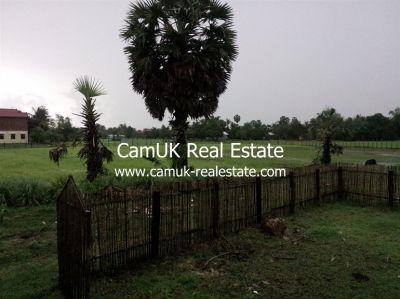 Puok, Siem Reap | Land for sale in Puok Puok img 19