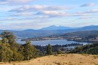 Views, Pasture and Bush