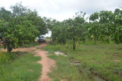 S'ang Phnum, Kandal | Land for sale in S'ang S'ang Phnum img 2