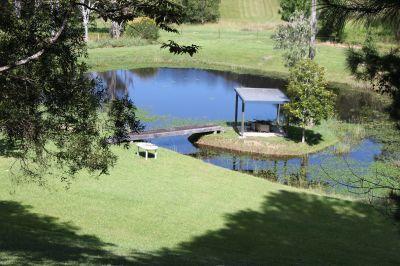 NOBBYS CREEK, NSW 2484