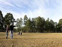 Lot 106 Sattler Circuit Singleton, Nsw