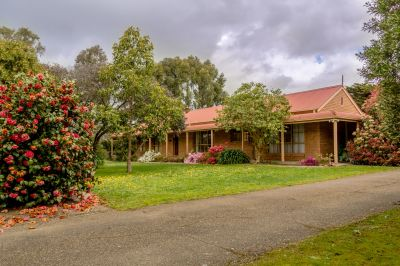 QUALITY HOME & S C BUNGALOW ON ONE ACRE