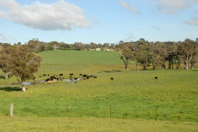 NEVILLE, NSW 2799
