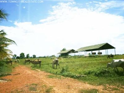 Chbar Mon, Kampong Speu | Land for sale in Chbar Mon Chbar Mon img 4