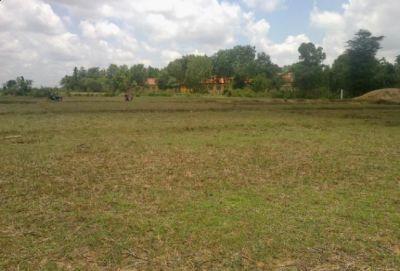Veal Pung, Kampong Speu | Land for sale in Odongk Veal Pung img 1