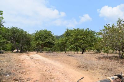 Kep | Land for sale in Kep  img 2