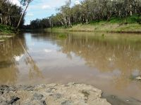 A TOUCH OF PARADISE ON THE CONDAMINE