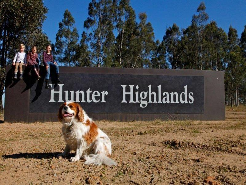 342 Robertson Circuit Hunter Highlands Estate, Singleton
