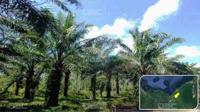 Land for sale in Kimbe Kimbe