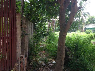 Svay Dankum, Siem Reap | Land for sale in Siem Reap Svay Dankum img 3