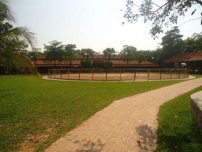 Svay Dankum, Siem Reap | Land for sale in Siem Reap Svay Dankum img 15