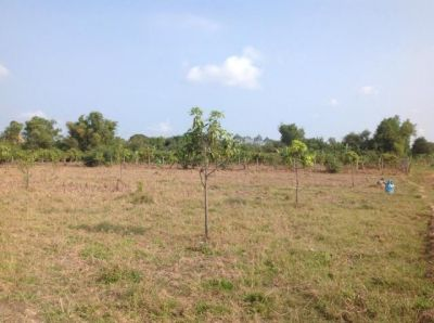 Chheu Teal | Land for sale in Banan Chheu Teal img 1
