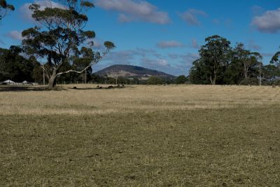 Prime Land in a Prime Location   13.67 hectares - 33.78 acres (approx.)