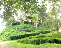 S6528 - House plus land in Wewak - BAH/SKS/SGN