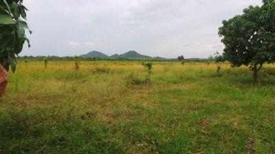 Baek Chan, Kandal   Land for sale in Angk Snuol Baek Chan img 3