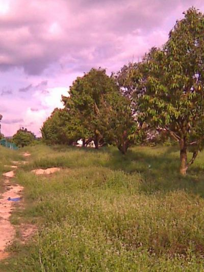  Land for sale in Srae Ambel  img 1