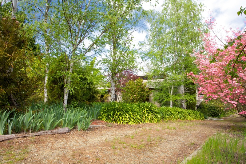 Ideal Family Home, Ovens River Frontage