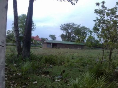 | Land for sale in Ponhea Lueu  img 1