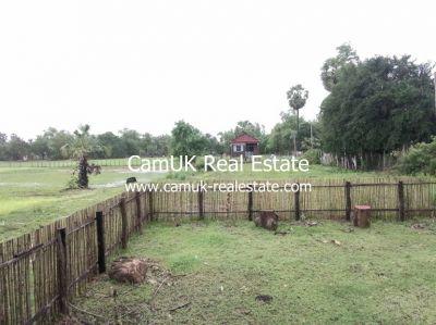 Puok, Siem Reap | Land for sale in Puok Puok img 17